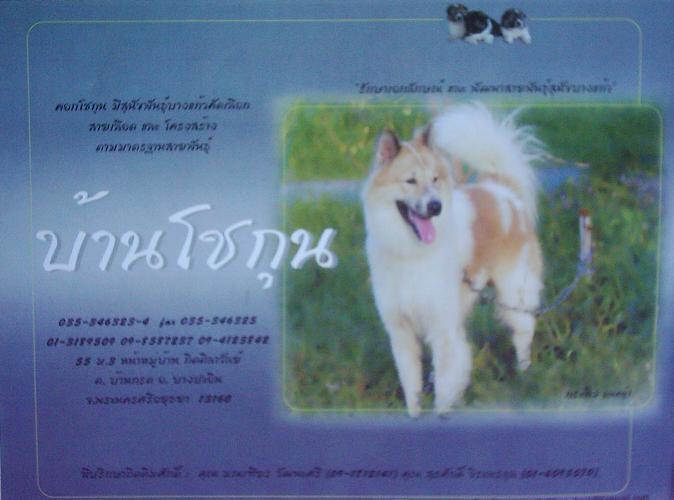 http://www.bangkaew.com/chokhun/index_image001.jpg